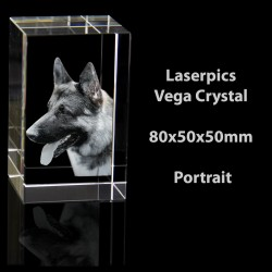2D Vega Crystal Portrait (80 x 50 x 50mm)